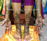bridal henna michigan