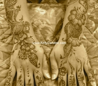 henna_setu_hands_arms_lo