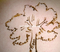 henna_tree_back_small