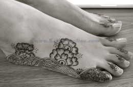 Bridal Henna – Fatima in Saginaw, Michigan