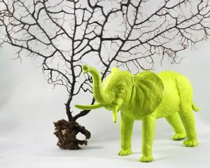 chartreuse elephant