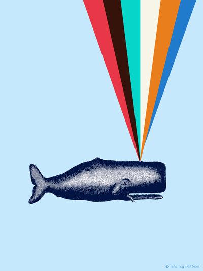 misha blaise, rainbow whale