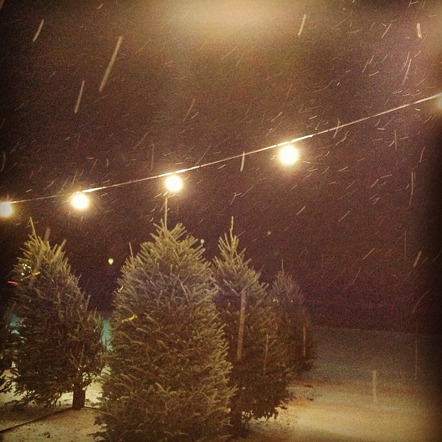 A beautiful evening to pick out our Christmas tree! Winter is starting to suck up to me..  #snow #winter #pretty #snowflakes #christmas #tree #pinetree #lights #night #ypsilanti #ypsi #michigan #kellycaroline #christmastree