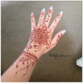 henna, mehndi, india, indian bridal henna, indian bridal mehndi, michigan, henna artist, kelly caroline, michigan henna artist