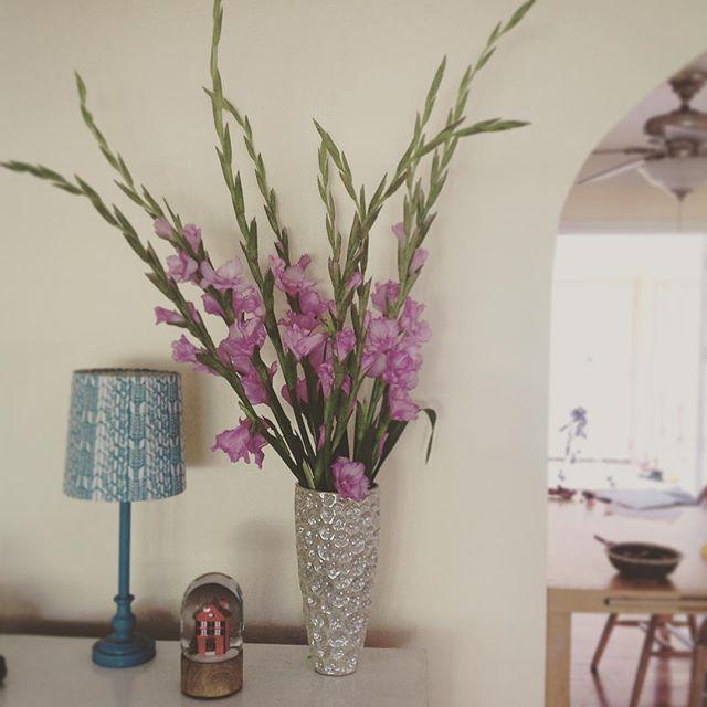 Beautiful gladiolas from the farmers market today #floral #flower #flowers #vase #farmersmarket #market #fresh #pink #purple #organic #garden #plants #bouquet #leaves #summer