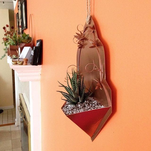 This is a piece in my latest artwork. You can find this succulent planter (and its mates) at the @holiday_market_at_grace_canton Saturday Nov 17th 10am-4pm . I am so excited to be debuting these lovelies at @grace.churches market! . . #canton #craftmarket #graceholidaycraftmarket #gracechurch #ypsi #ypsilanti #annarbor #michigan #plymouth #cantonmi #succulents #smallbusiness #succulentsofinstagram #holidaygifts #plymouthmi @purecanton #rosegold #kellycaroline #handmade